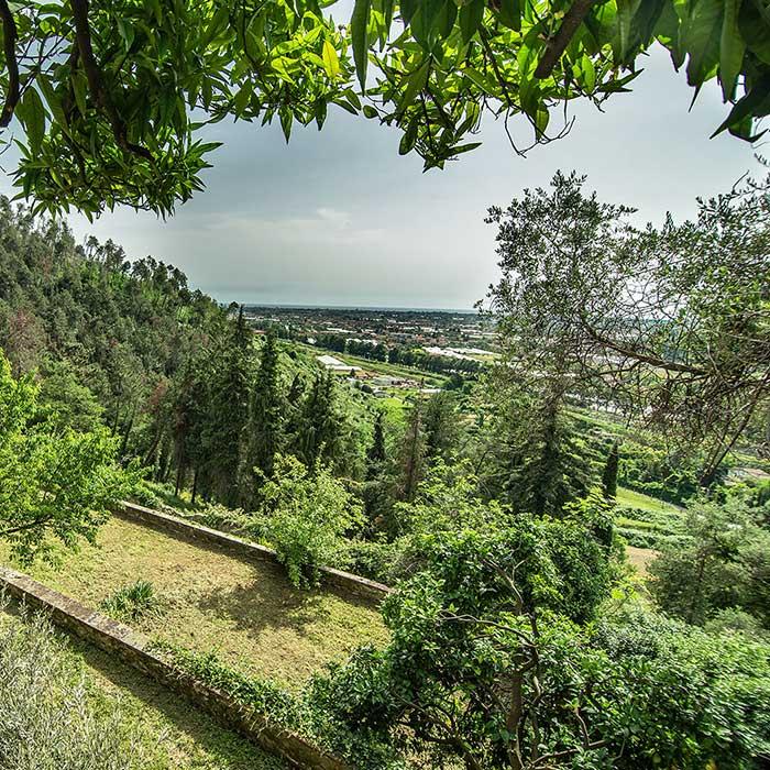Villa-Cavallini-Sentieri